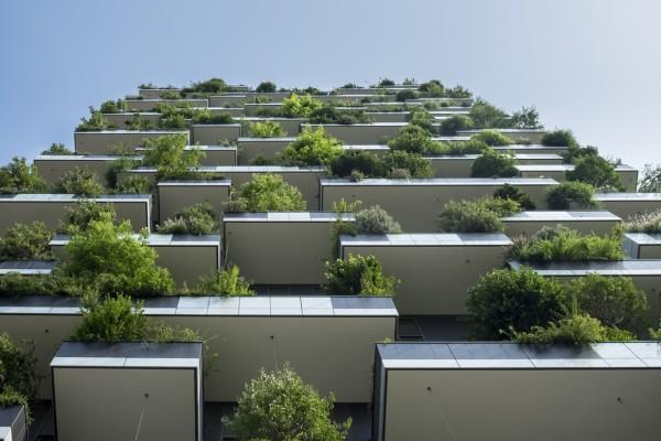 Trees on balconies